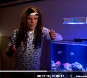 Nasze akwarium w telewizji
