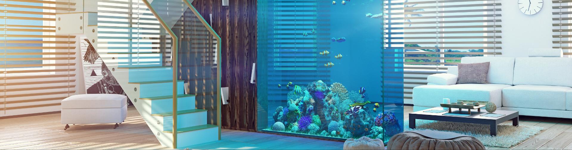 Akwarystyka morska szczecin 3