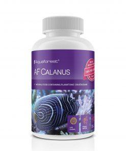 AF Calanus pokarm dla ryb i korali