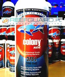 ATM COLONY Marine – Dopalacz cyklu azotowego 946 ml