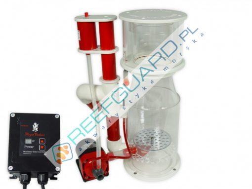 Odpieniacz Royal Exclusive Exclusiv Bubble King DeLuxe 200 internal + RD3 Speedy od 600 do 1500 litrów