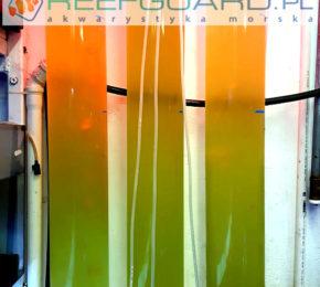 Nowe Bioreaktory do fitoplanktonu w Reefguard