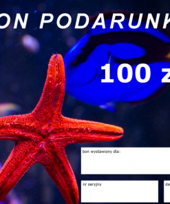 akwarystyka morska szczecin reefguard.pl