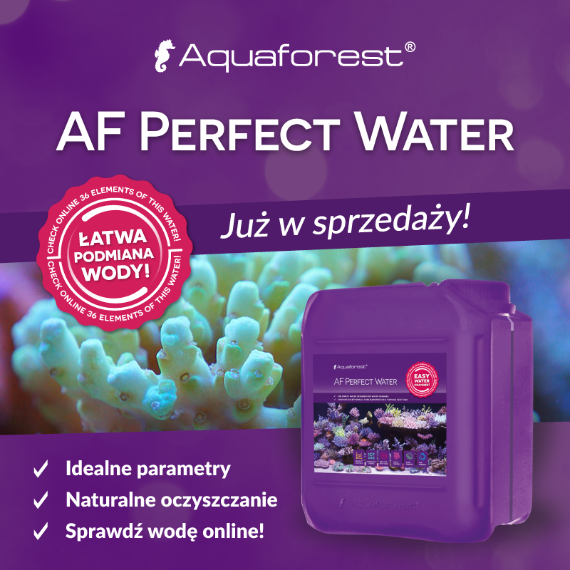 Aquaforest AF Perfect Water 20l idealna woda morska