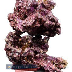 Real Reef Rock Bryły sucha skała