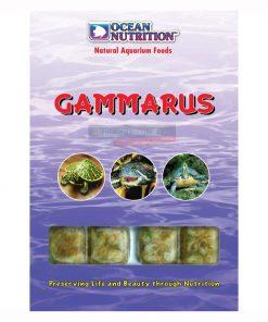 Gammarus 100g Kiełże Ocean Nutrition Frozen