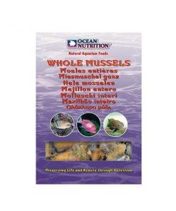 Whole Mussel 100g Omułki Ocean Nutrition