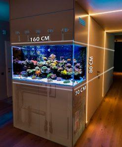Akwaria i Systemy Morskie na zamówienie