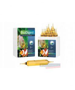 PRODIBIO BioDigest 1 ampułka bakterie nitryfikacyjne