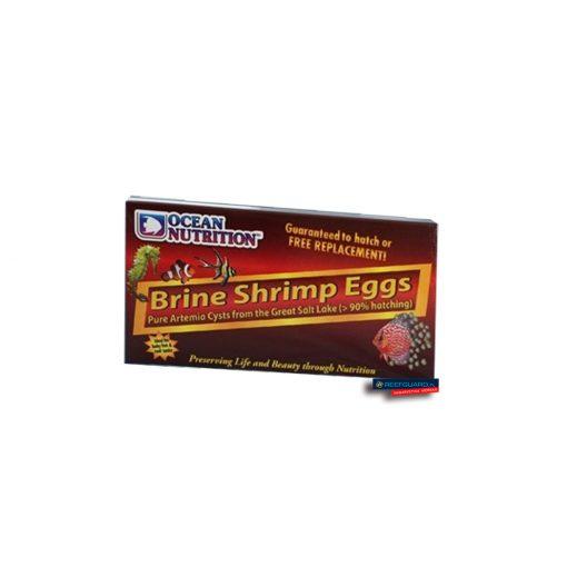 Brine Shrimp Eggs 20g Ocean Nutrition