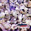 Żywa skała morska drobna do sumpa gruz koralowy 1kg