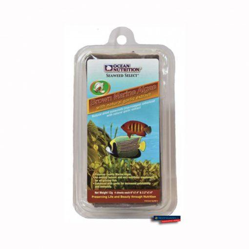 Seaweed Brown 12g Algi Ocean Nutrition