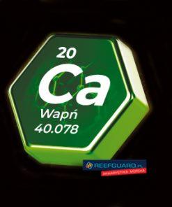 Ca Wapn Kopia 247x296